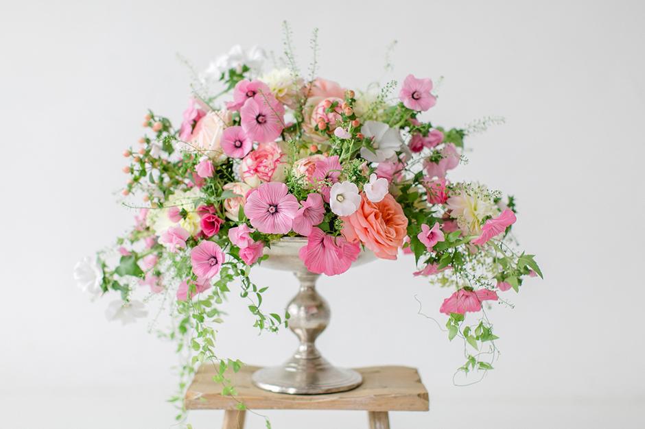Diana Frohmueller Photography Blume des Monats 07 2016  3_