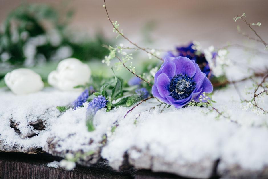 Hochzeitsblumen Winter