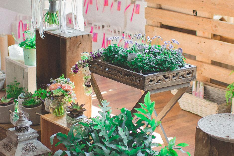 Pflanzen als Tischdekoration
